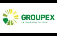 Groupex x