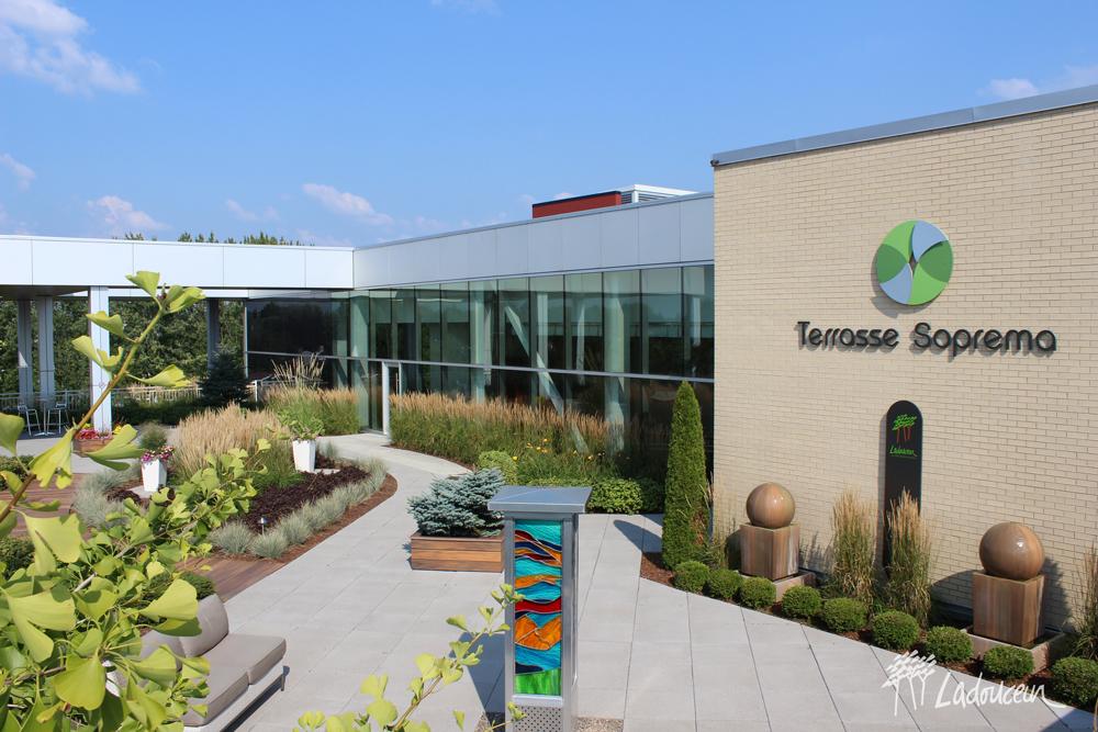 Toit terrasse avec vegetaux trottoir en dalles de beton et fiberon ladouceur