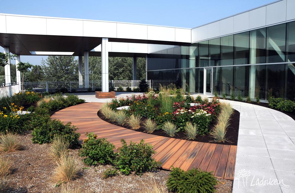 Trottoir de bois composite et en pave de beton et amenagement paysager sur la terrasse toit vert maison des arts desjardins drummondville par ladouceur