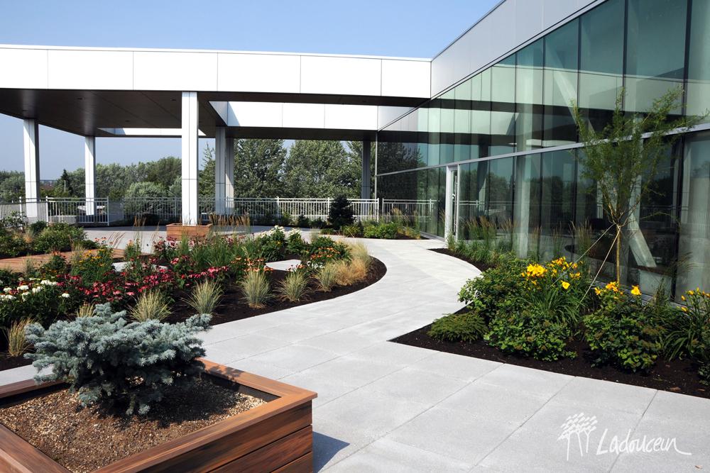 Toit Vert Et Toit Terrasse Innovations Paysagées Ladouceur