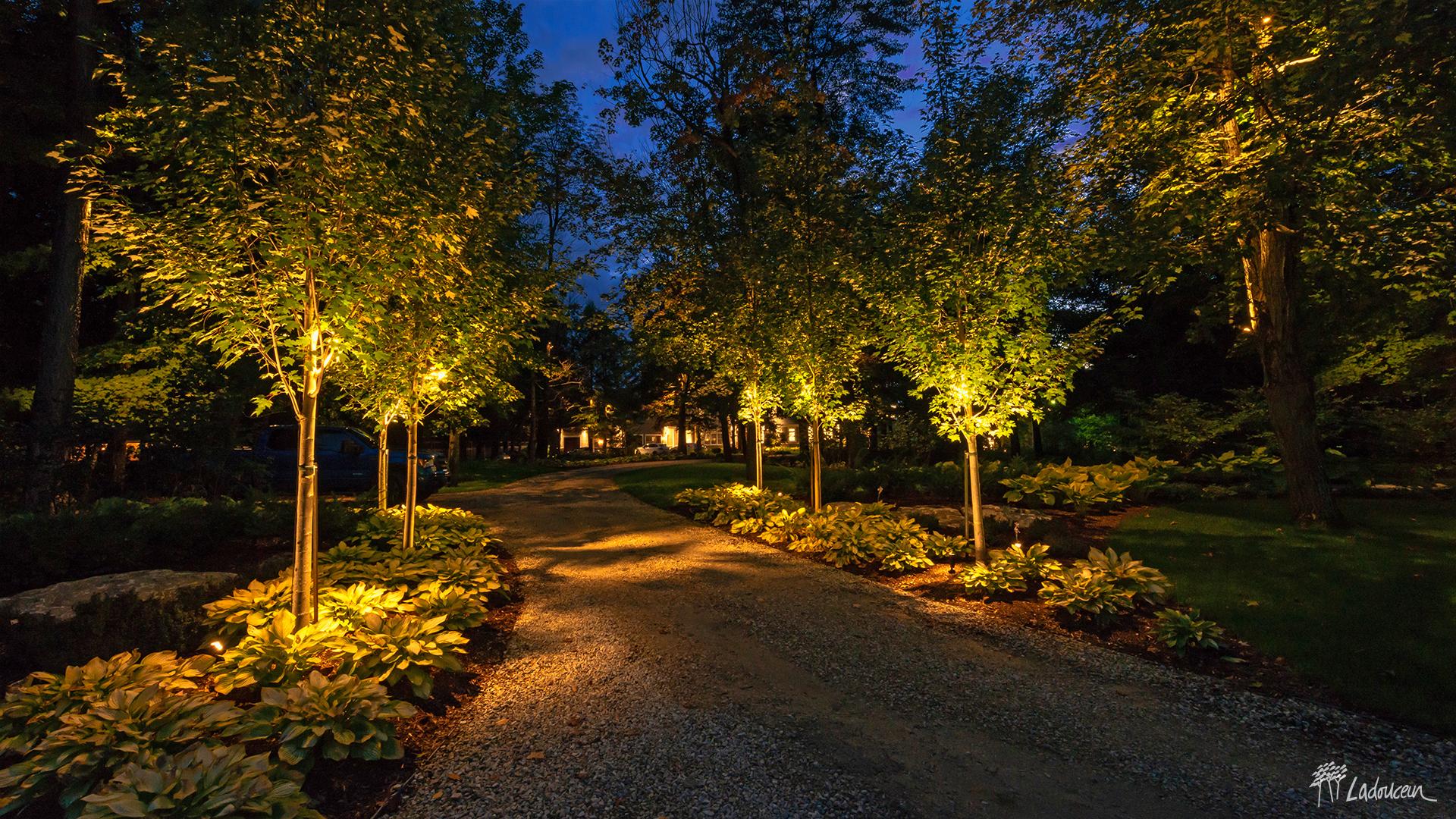 Entrée de cour et boisé éclairé par un éclairage paysager architectural Ladouceur